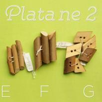 Platane-2