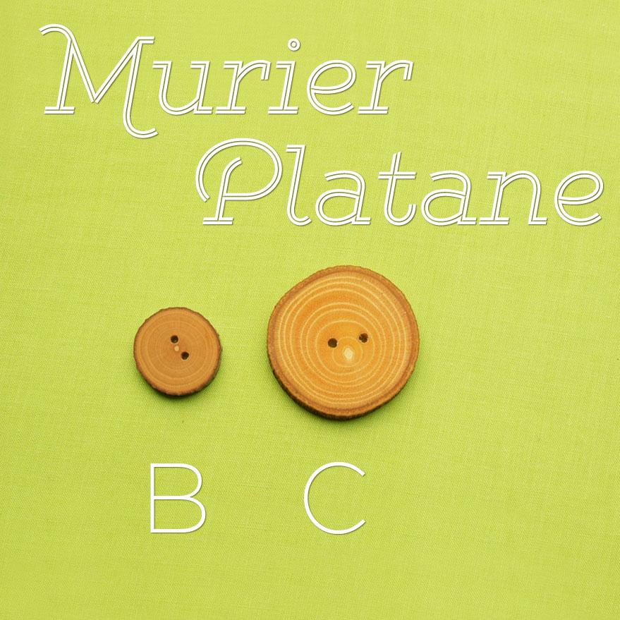 murier-platane